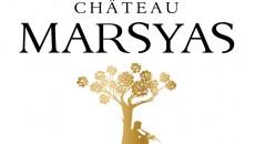 Logo Marsyas - Copy