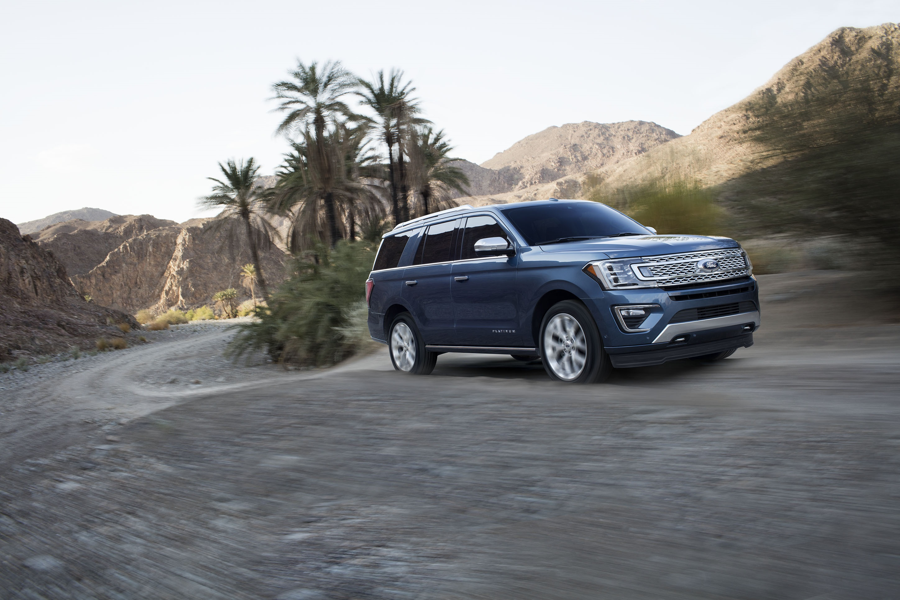 2018 Ford Expedition (2)